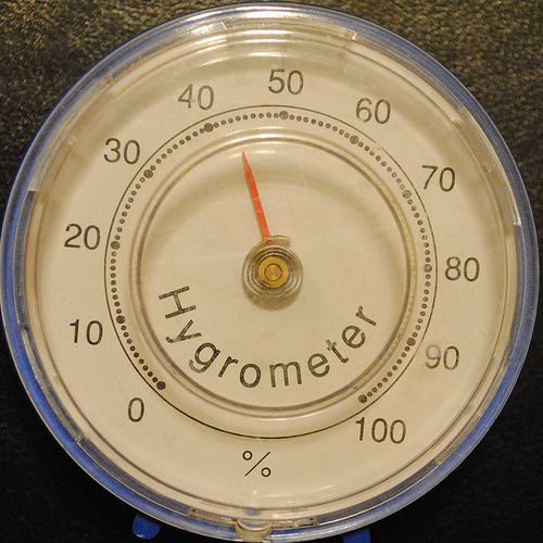 measure humidity level in your home to prevent mould